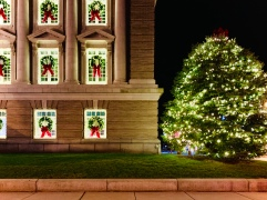OC City Hall and the Official Christmas Tree